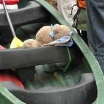 2013-05-01-kanutour-pegnitz-dav-amberg-02
